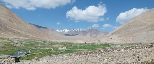 Noord-India | Changtang & Pangong Tso